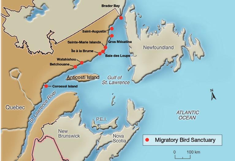 region of saint lawrence canada map choice image diagram 2001 pontiac aztek stereo wiring diagram